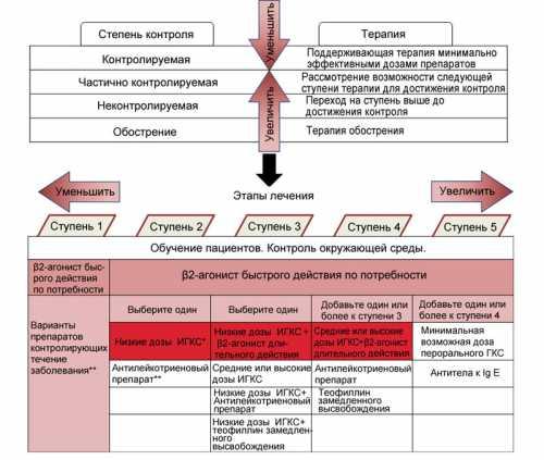 Лечение бронхиальной астмы собственными гормонами