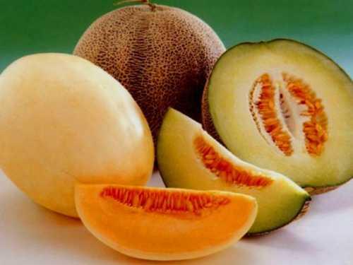Чем полезна дыня для здоровья и похудения