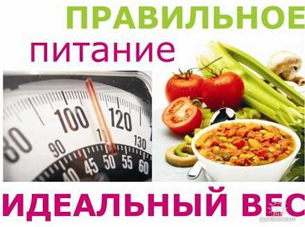 Целлюлит: принципы правильного питания
