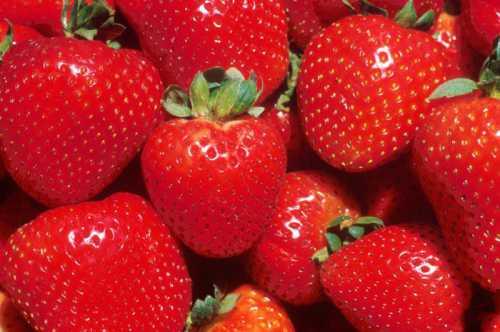 Ягоды клубники вкусные и полезные