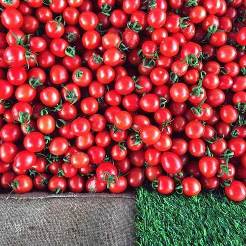 Узнай как приготовить помидоры с аспирином: какие
