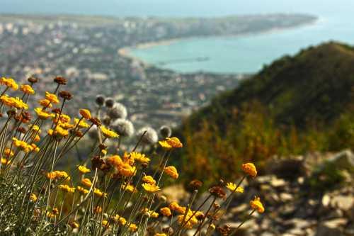 Туризм и путешествия Тревел-гид