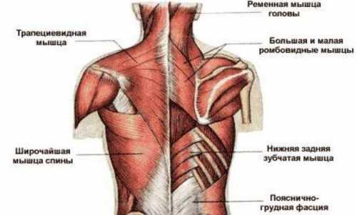 Язвенной болезни двенадцатиперстной кишки и желудке